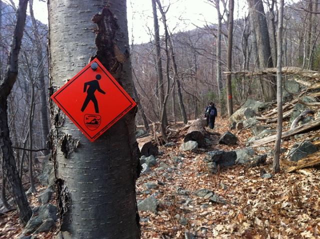 Upper Dark Hollow Trail, Virginia