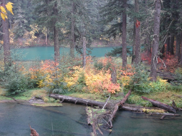 Greenwater Trail #3
