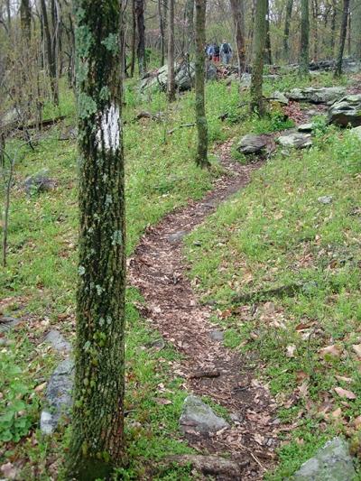 Green Trail - Virginia