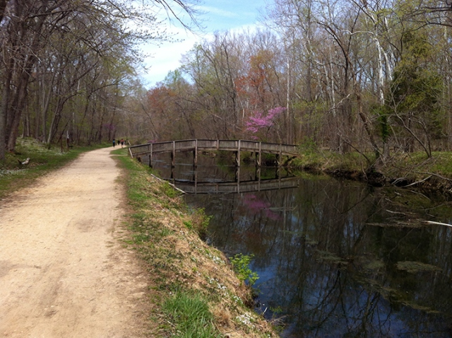 Strolling the C & O Canal Towpath