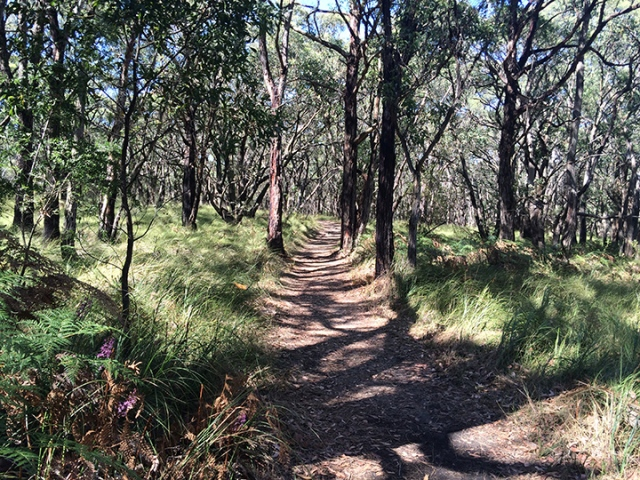 Just a hike in the land Down Under